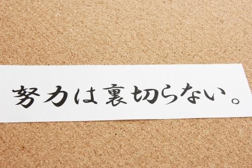 英語の勉強を「続ける」のが難しい?だったらこの4つを習慣にしよう!