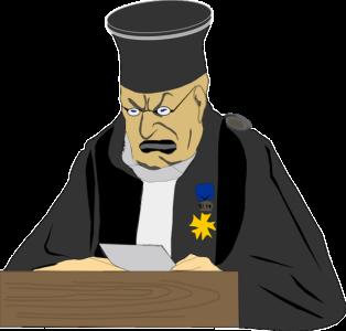 裁判所が確認する